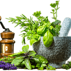 Oregano Shown to be the Most Powerful Culinary Herb